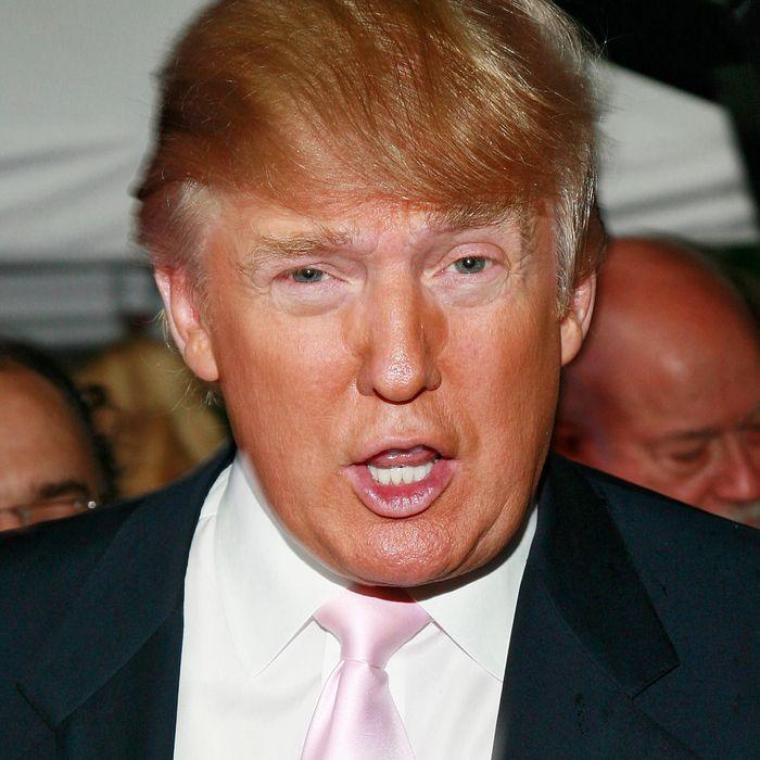 Donald Trump. Photo: Charles Eshelman/FilmMagic