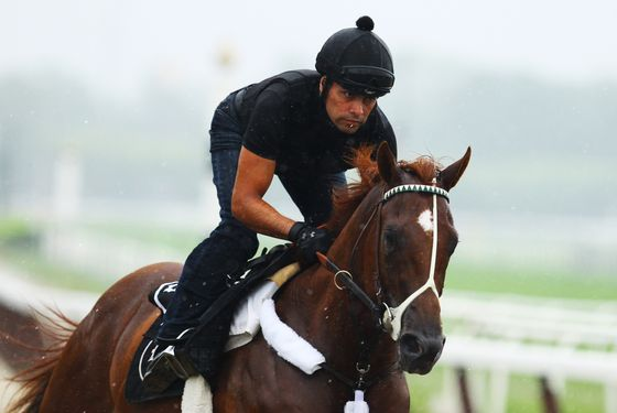 Kentucky Derby, and Preakness winner I'll Have Another is ridden by exercise trainer Humberto Gomez at Belmont Park on May 21, 2012 in Elmont, New York.