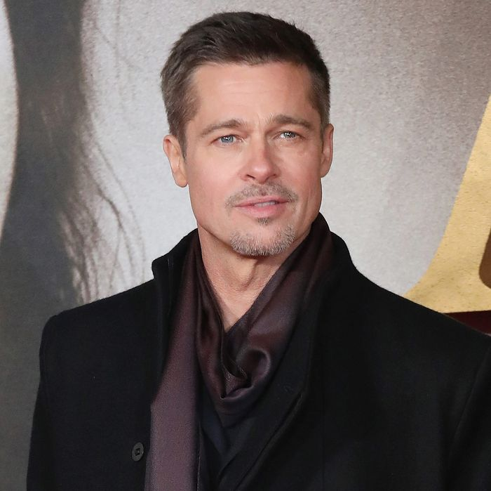 Did Brad Pitt Secretly Get Sober at Fancy Rehab?