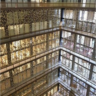 NYU Installs Anti-Suicide Screens in Bobst Library