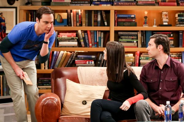 the big bang theory the geology elevation ellen