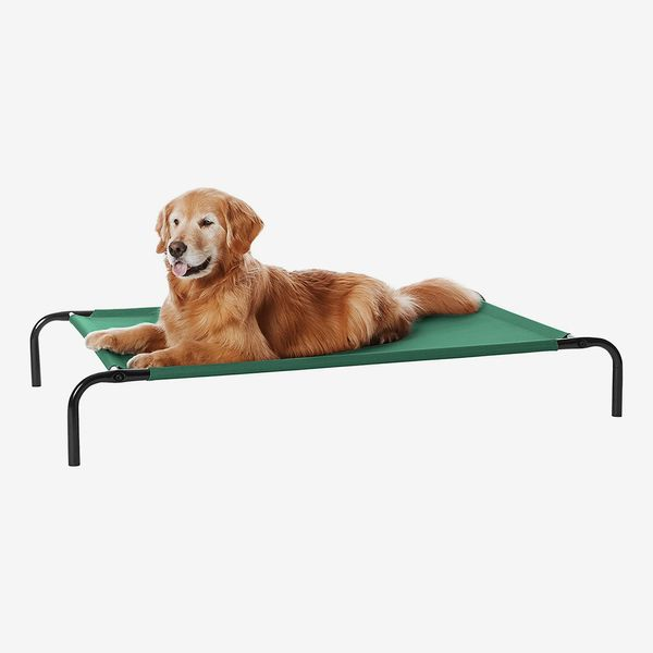 19 Best Dog Beds 2021 | The Strategist