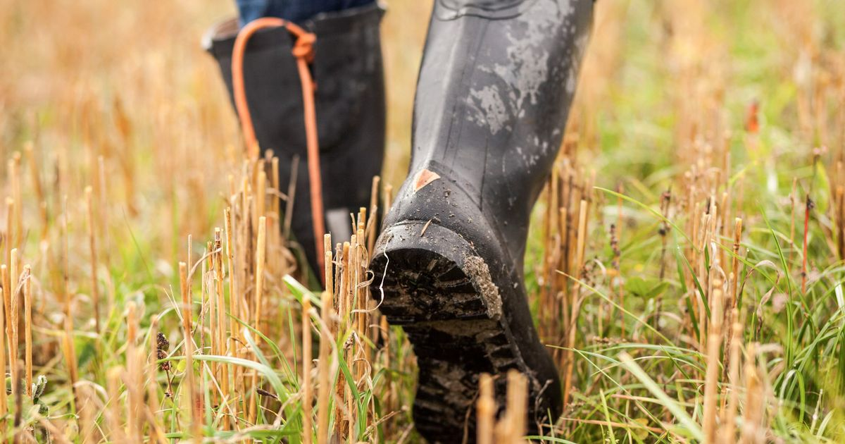 The Best Men's Rain Boots, According to Amazon Reviews