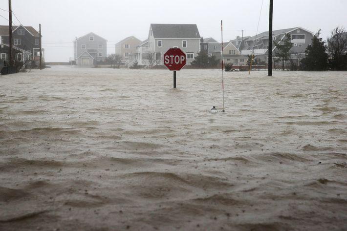 Storm Slams East Coast With Floods, Snow, and 'Windmageddon'