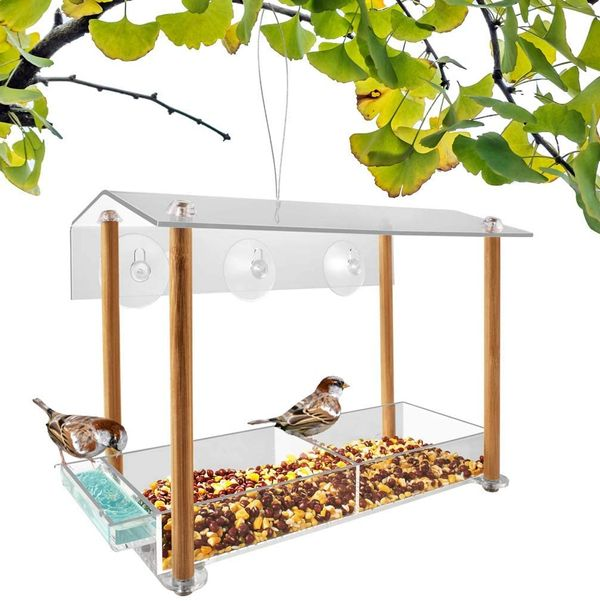 NIUXX Window Bird Feeder with Suction Cups
