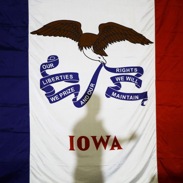Iowa's state flag.