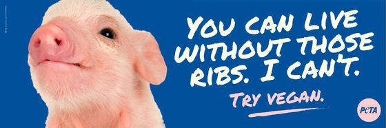 Piggy ribs