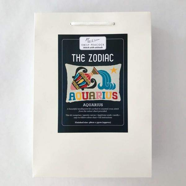 Make Workshop Zodiac Pillow Needlepoint Kit, Aquarius
