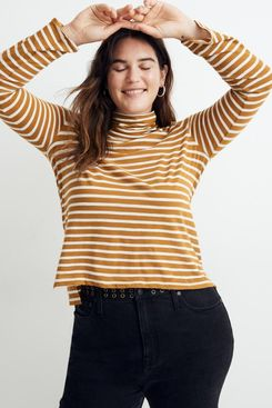 Madewell whisper cotton turtleneck in helene stripe