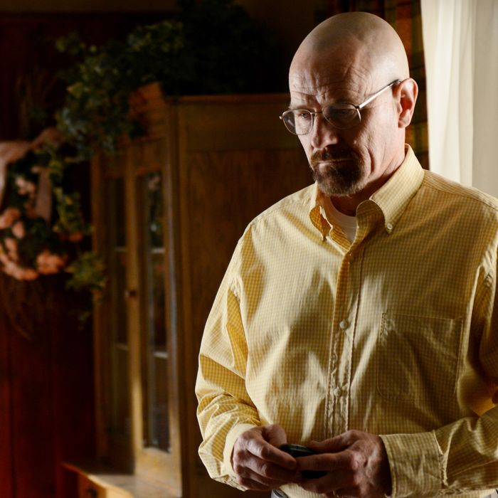 Walter White (Bryan Cranston) - Breaking Bad - Season 5, Episode 8
