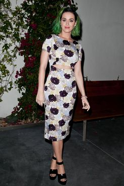 LOS ANGELES, CA - APRIL 08:  Katy Perry attends as Nicole Richie, Rivka Sophia Rossi, Hayden Slater and friends host Marianne Williamson, Independent Candidate for Congress, CA 33 event at Kayne Griffin Corcoran Gallery on April 8, 2014 in Los Angeles, California.  (Photo by Tibrina Hobson/Getty Images)