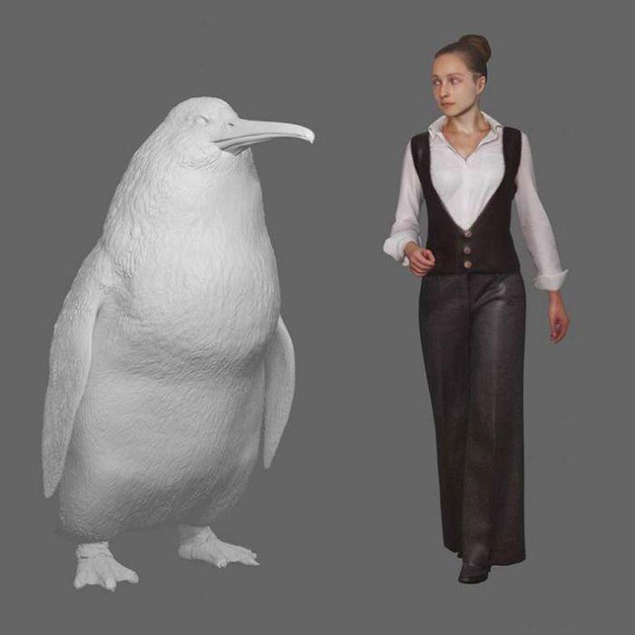 Big penguin.