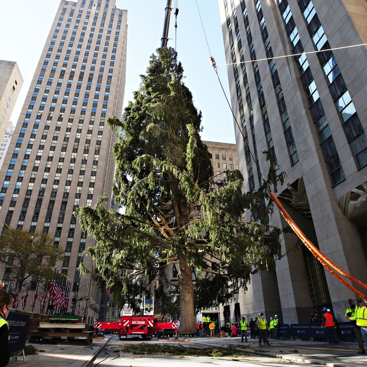 Christmas Trees In Queens, Ny 2021 The Rockefeller Center Christmas Tree Got A Glow Up