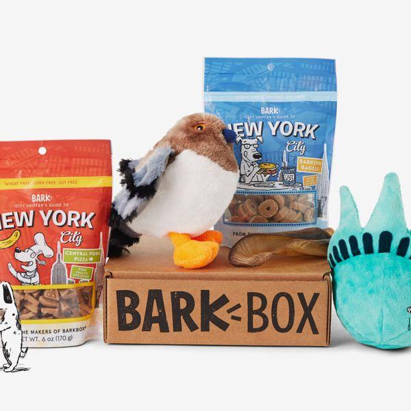 Abonnement cadeau BarkBox, mensuel