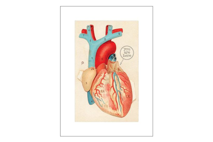 Lucca Paperworks Anatomical Heart Love Card