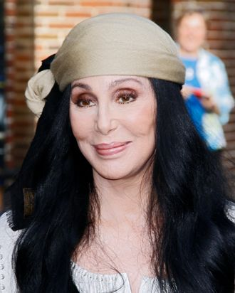 Cher has Twitter game. Photo: Donna Ward/Getty Images