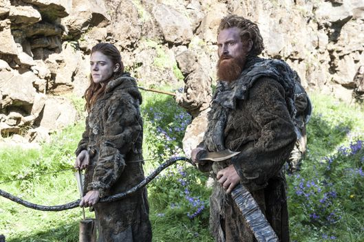 Image result for the wildlings