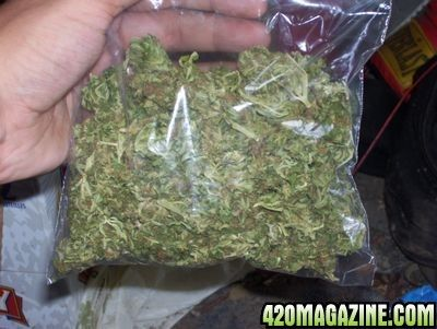 This Is What 2 Ounces Of Weed Looks Like
