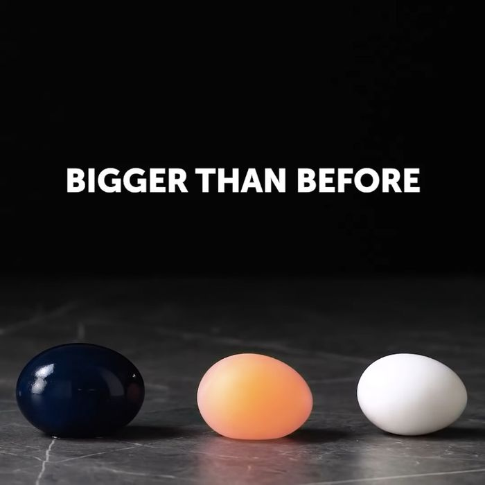 The Egg Is Bigger Than Before What Is 5 Minute Crafts