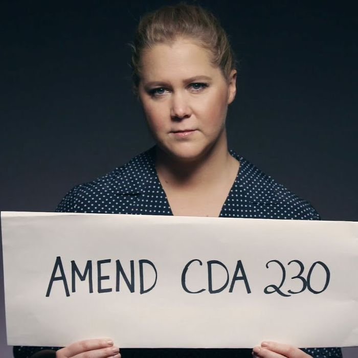 Amy Schumer is one of many celebrities who given PSAs in support of SESTA.