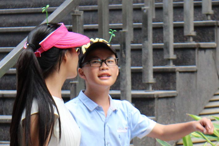 Sprouting tiny grass on your head is apparently a thing in China now