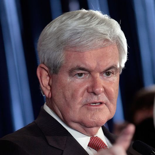 Republican presidential candidate, former Speaker of the House Newt Gingrich speaks during a primary night rally January 21, 2012 in Columbia, South Carolina.