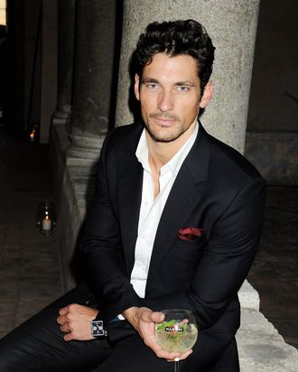 David Gandy. (Not pictured: the goose.)