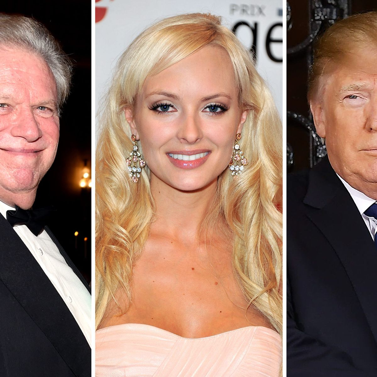 Theory: Playboy Model Had Affair With Trump, Not Broidy
