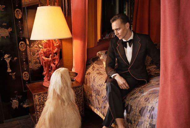 775526550df Tom Hiddleston Caught Deep in Conversation With a DogHiddleston's canine  companions steal the show in his new Gucci ads.