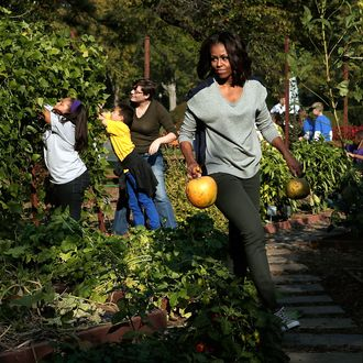 Trumps Have No Plans To Bulldoze White House Veggie Garden