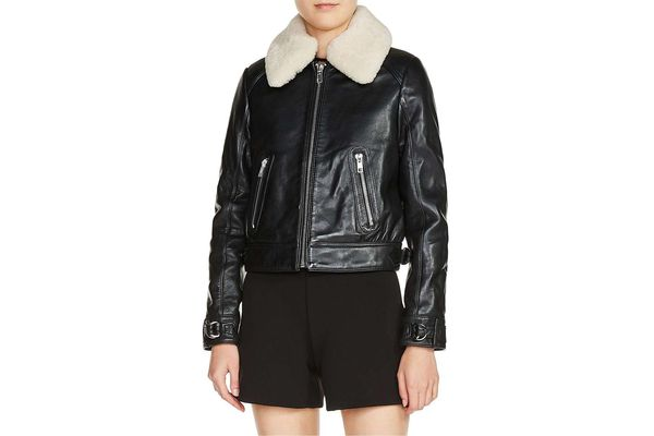 Maje Genuine Shearling Collar Leather Aviator Jacket