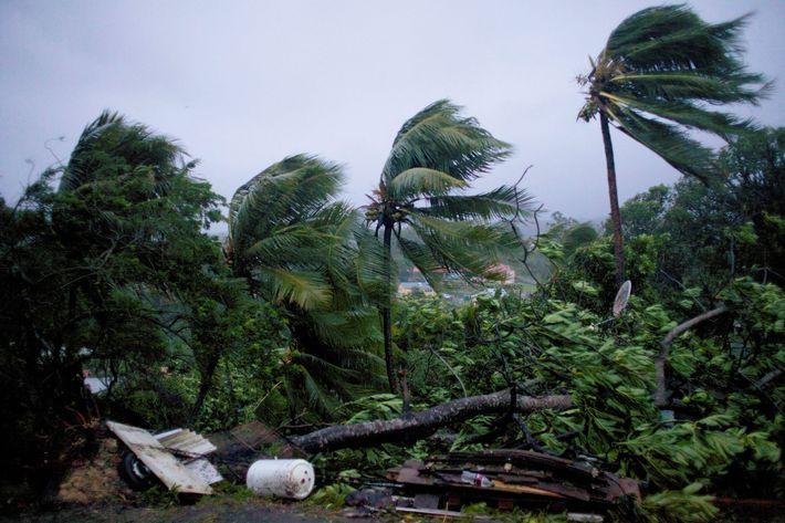 Resultado de imagen para Huracán María comienza a generar aguaceros y ráfagas de vientos en zona este de RD