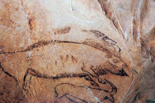 Paleolithic cave-painting of a bison and ibex in the 'Salon Noir' of the 'Grotte de Niaux'. (Photo by CM Dixon/Print Collector/Getty Images)