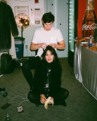 Are Shawn Mendes and Camila Cabello Dating or Just Friends?