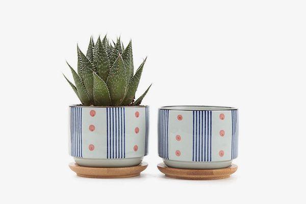 3-Inch Ceramic Japanese-Style Cactus Pot