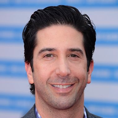 David Schwimmer arrives for the 'Trust' premiere