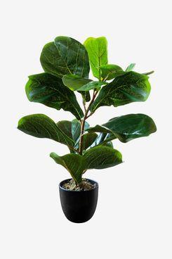 Artificial Fiddle-Leaf Fig