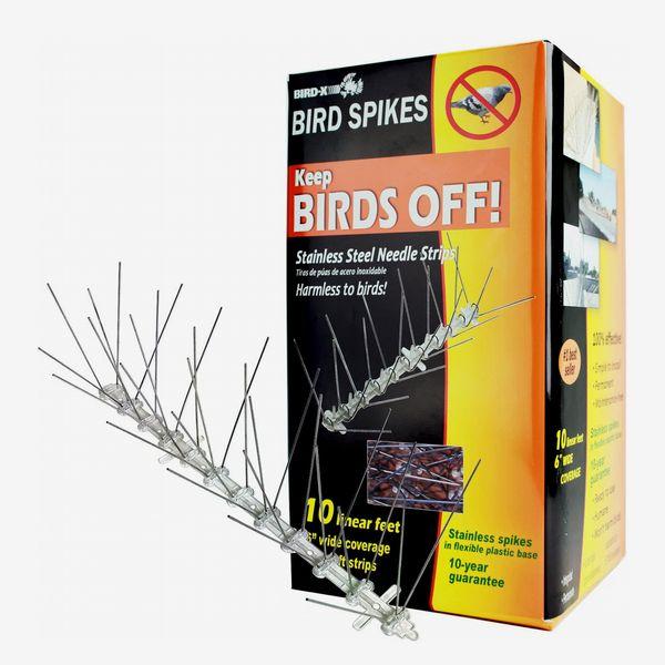 Bird-X STS-10-R Stainless Steel Bird Spikes