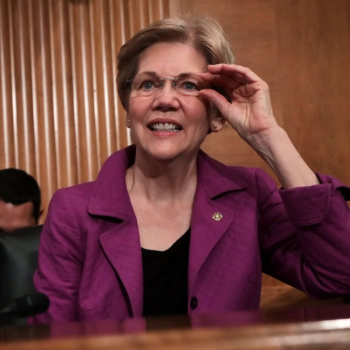 Vice President Warren, anyone?