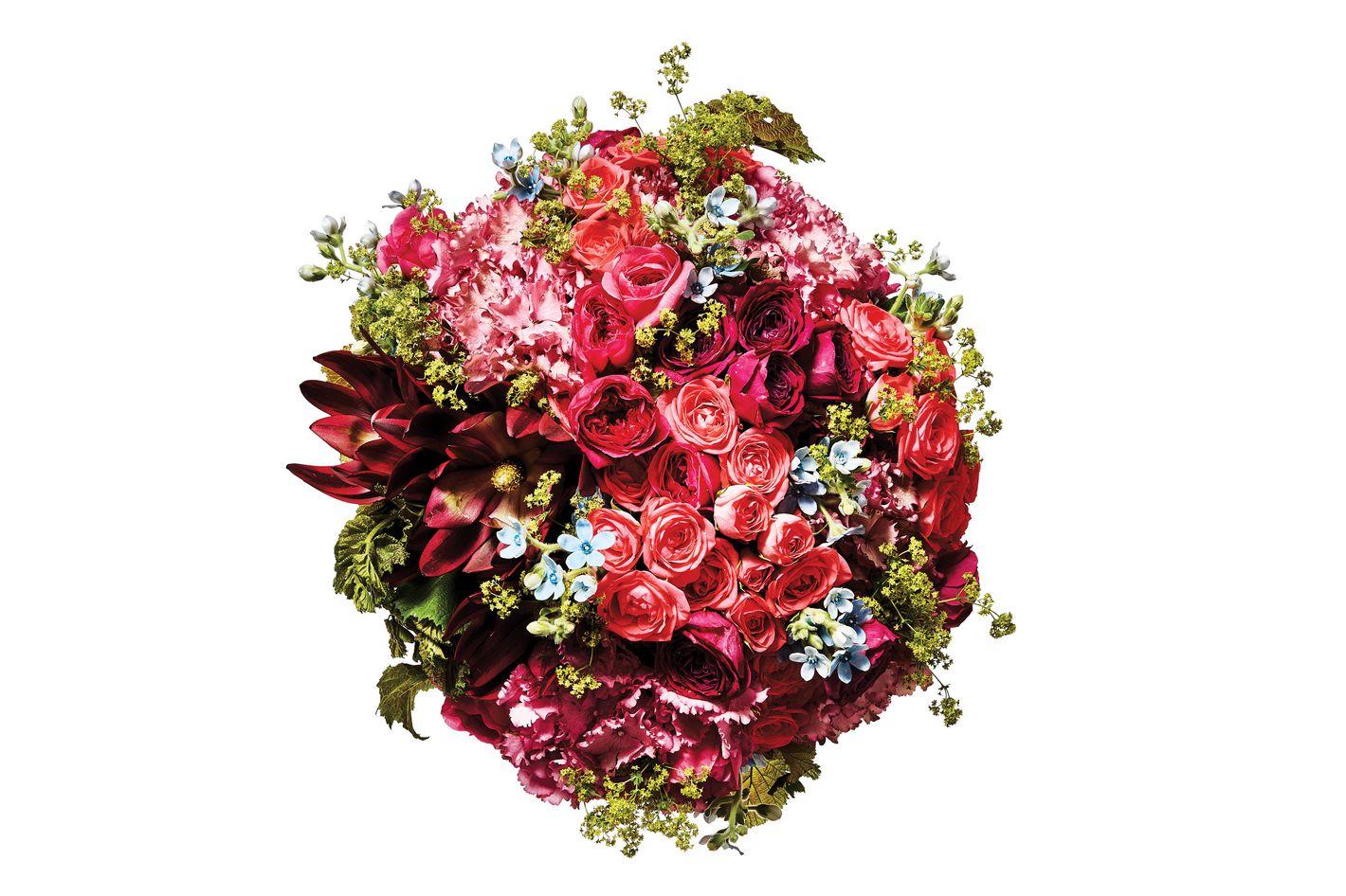 Dutch hydrangea, garden spray rose, garden rose, protea, tweedia, and lady's mantle