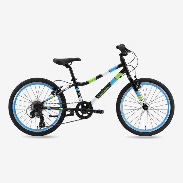 Guardian 20-inch Large Ethos Bike