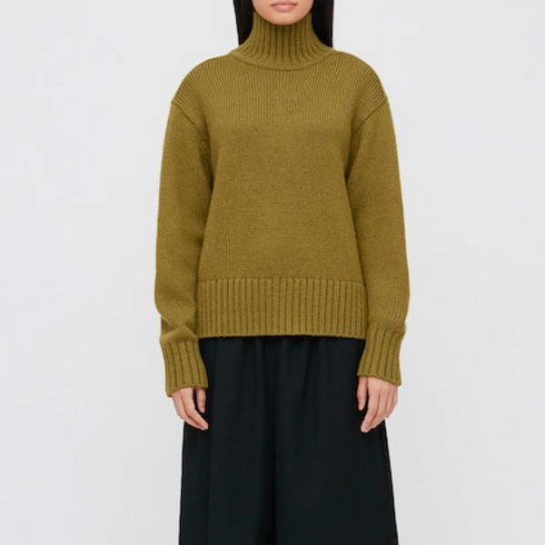Uniqlo Turtleneck Long-Sleeve Sweater (JW Anderson)