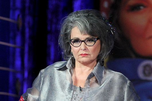 Roseanne Barr speaks onstage during the Comedy Central Roast of Roseanne Barr at Hollywood Palladium on August 4, 2012 in Hollywood, California.