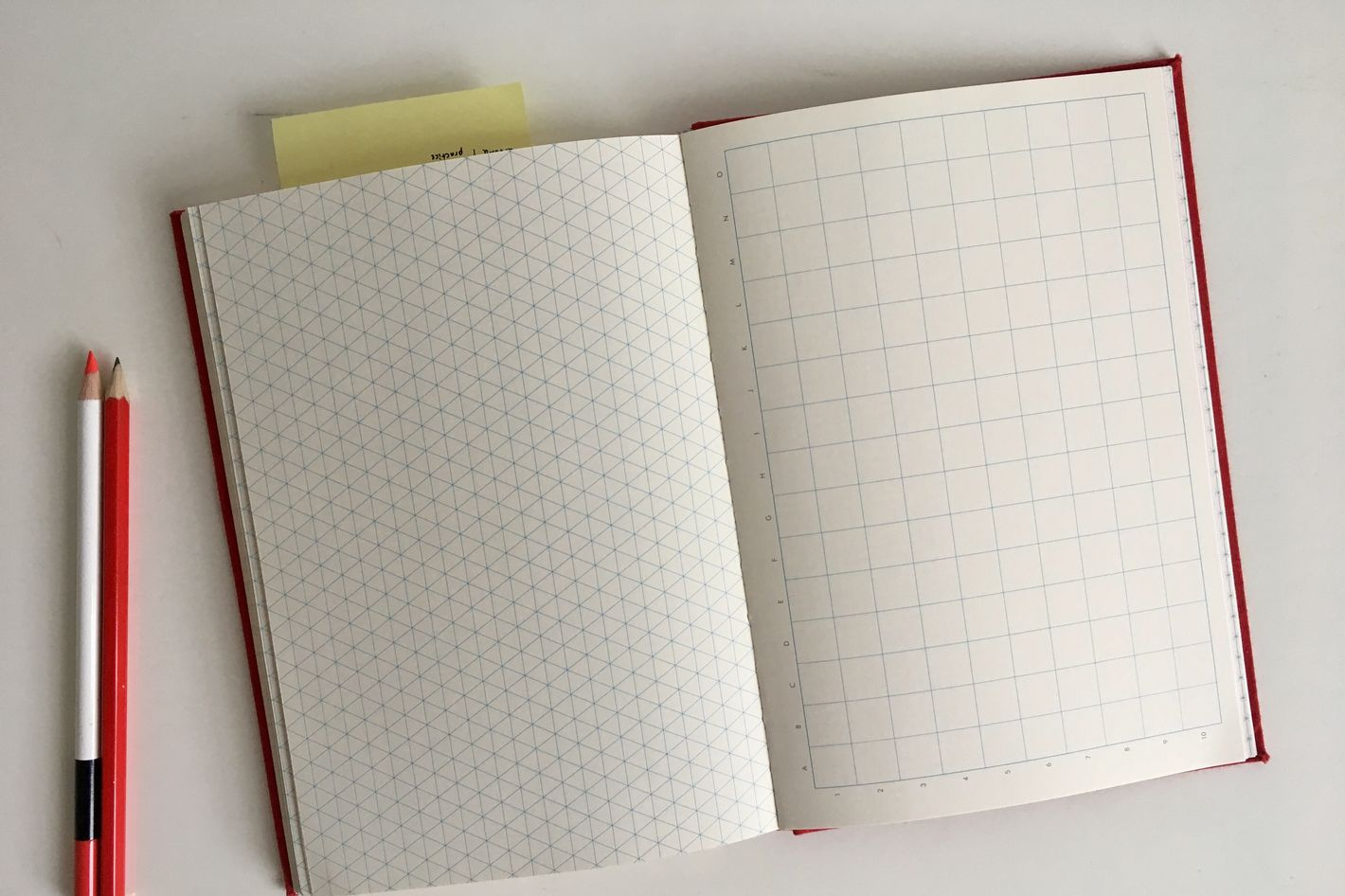 Princeton Architectural Press Grids & Guides Notebook