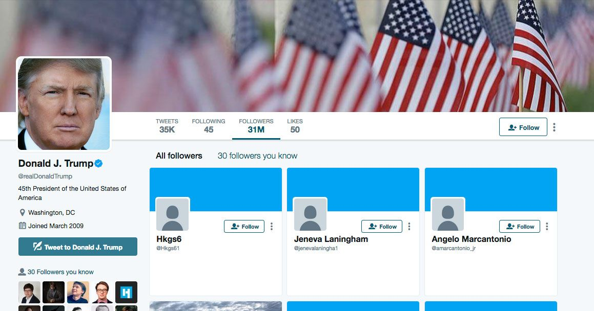 30 trump twitter followers 2.w1200.h630 what's up with all those trump twitter bots?,Trump Twitter Meme Generator