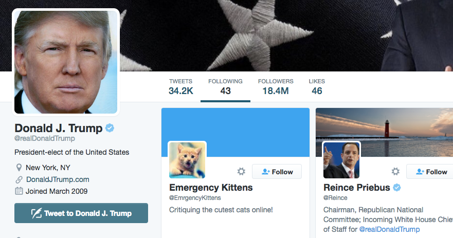 Donald Trump Follows Emergency Kittens on Twitter