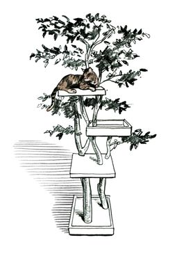 Sycamore Cat Pet Tree House