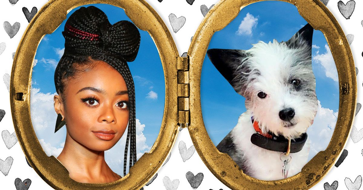 Skai Jackson's Dog Is a Person Trapped in a Dog's Body