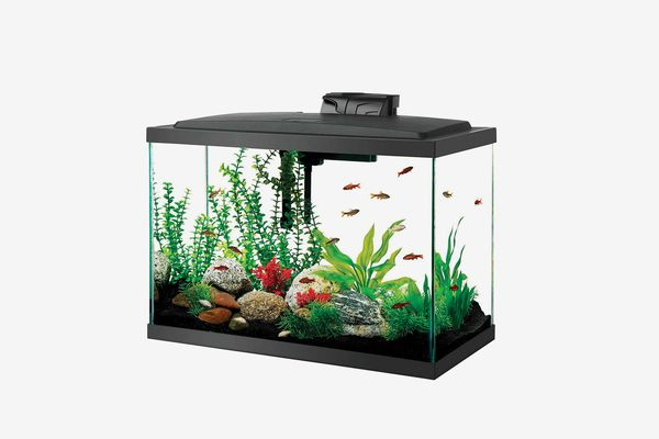 Aqueon Aquarium Fish Tank Kit, 20 Gallon