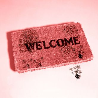 Welcome written on doormat, against pale blue background --- Image by ? 2/Steven Taylor/Ocean/Corbis